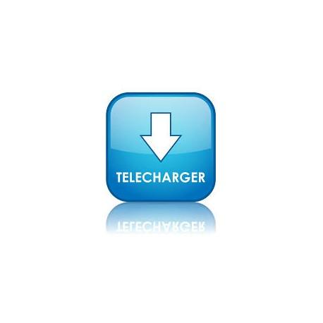 Téléchargement fichier - Serveur 2en1